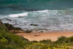 Turimetta beach north narrabeen